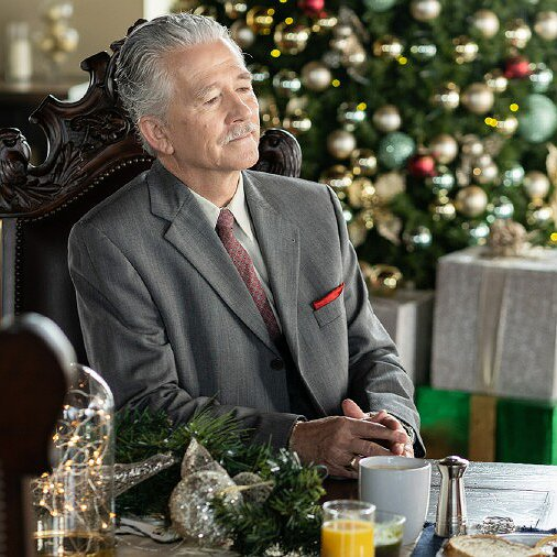 "Preview image for article: Patrick Duffy on Lifetime's ""Random Acts of Christmas,"" Life After ""Dallas"" and More"