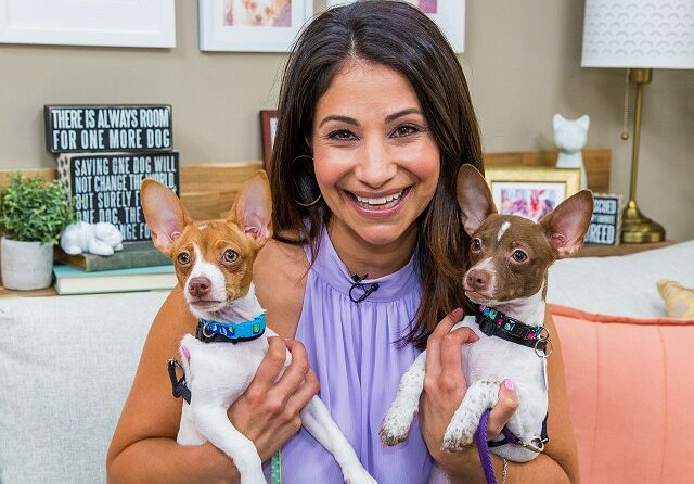 Larissa Wohl on Hallmark's Successful Adoption Ever After Initiative