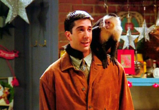 "Marcel the Mischievous Monkey:  Forever a Friend of ""Friends"""