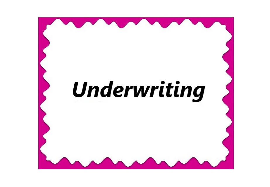 Advancing Diversity Underwriting