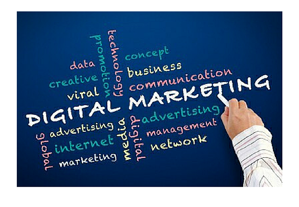 CPOs Becoming Critical Voice in Determining Digital Marketing ROI