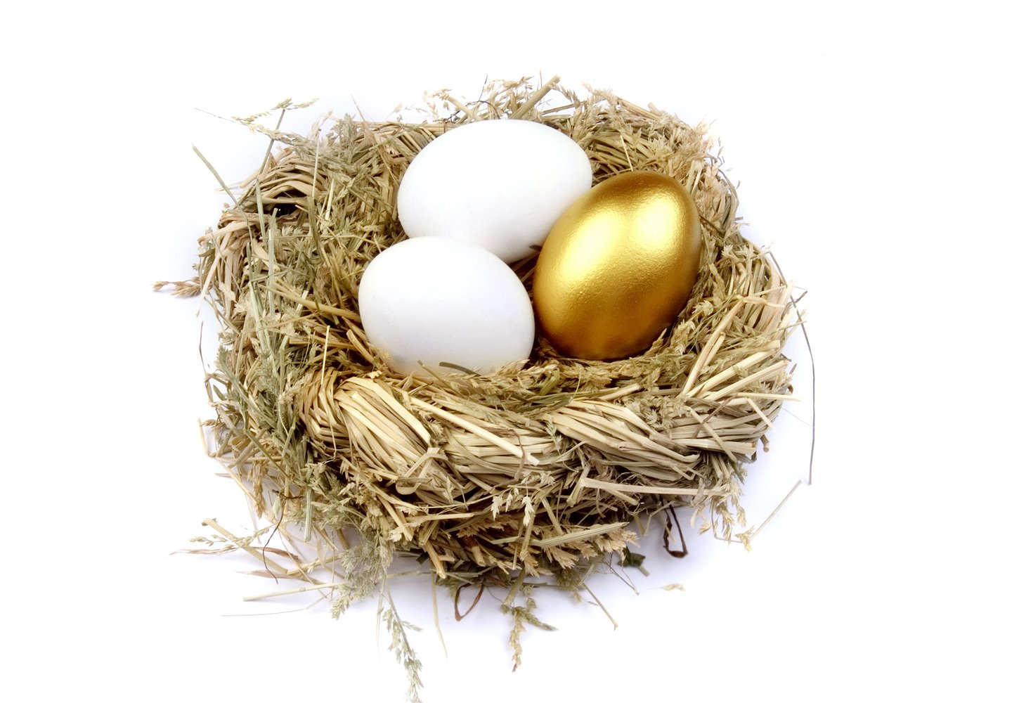 Quandary for Media Agencies: Golden Eggs from a Sick Goose