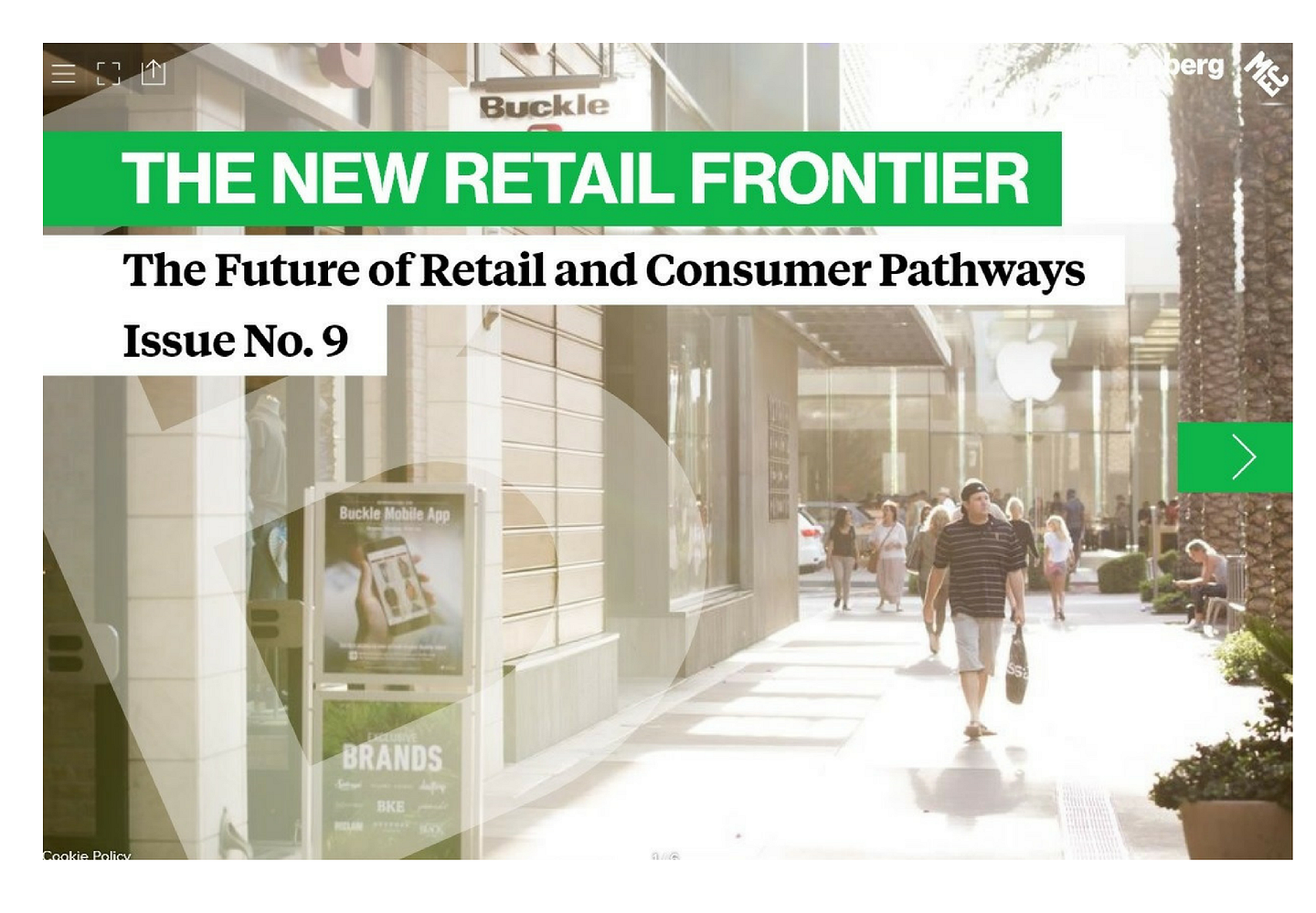 The Future of Retail and Consumer Pathways