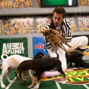 "Cover image for  article: TV Maven: ""Puppy Bowl IV"": Animal Planet's Paw Up on Super Bowl Sunday"