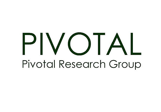 Nielsen: Wall. St. Perspective - Pivotal Research