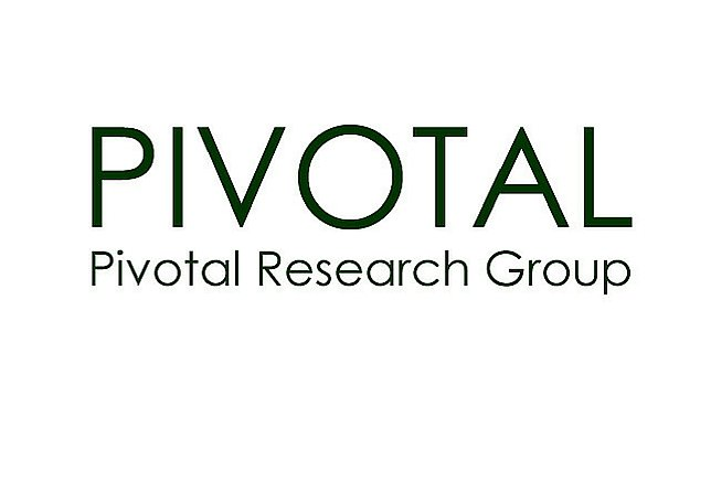IAB Digital Video Study Illustrates Growth -- Pivotal Research